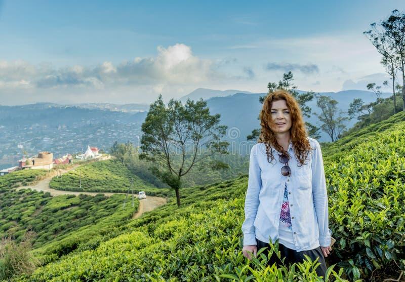 Posição bonita bonita da mulher na plantação de chá no único monte da árvore em Nuwara Eliya imagem de stock royalty free