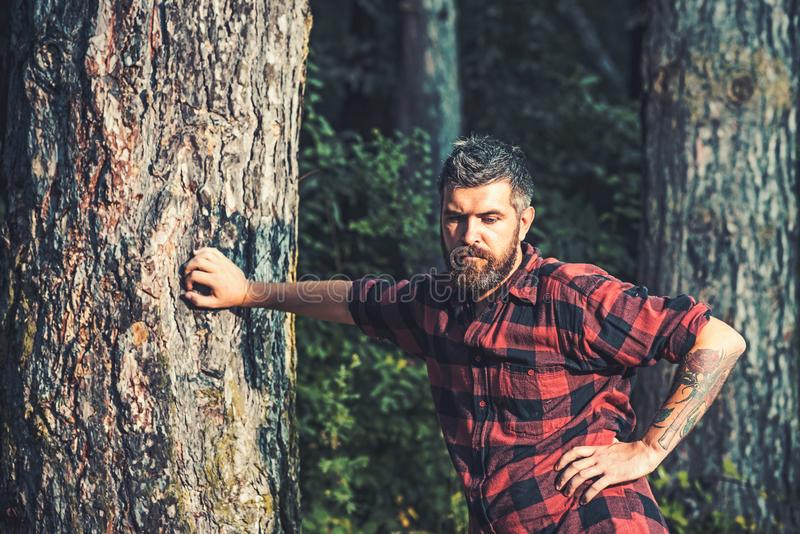 Posi??o brutal alta do homem no lenhador da floresta que descansa ao inclinar-se na ?rvore Moderno com tatuagem das rosas no bra fotografia de stock