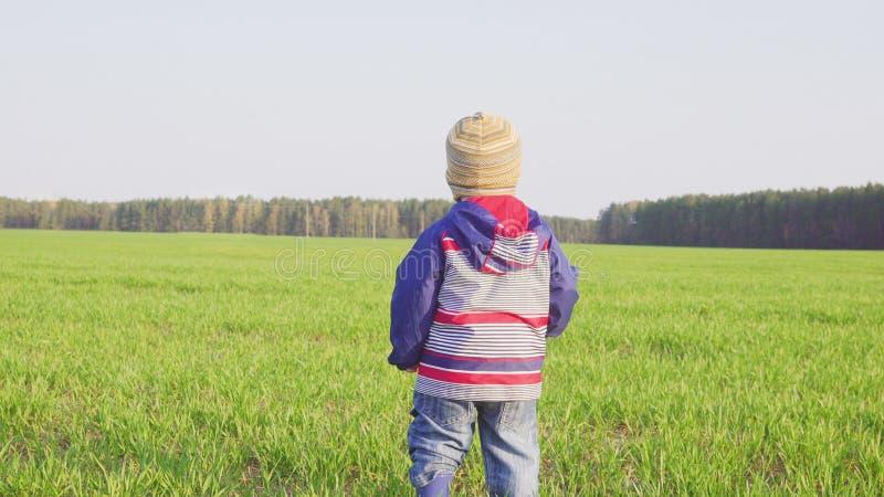 Posição de um ano do fazendeiro do menino no campo com trigo novo foto de stock