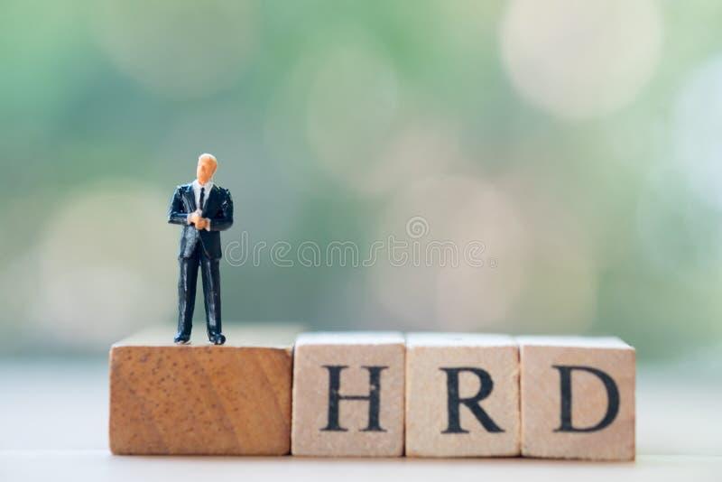 Posição diminuta do homem de negócios no desenvolvimento dos recursos humanos de madeira da palavra HRD do bloco: HRD foto de stock royalty free