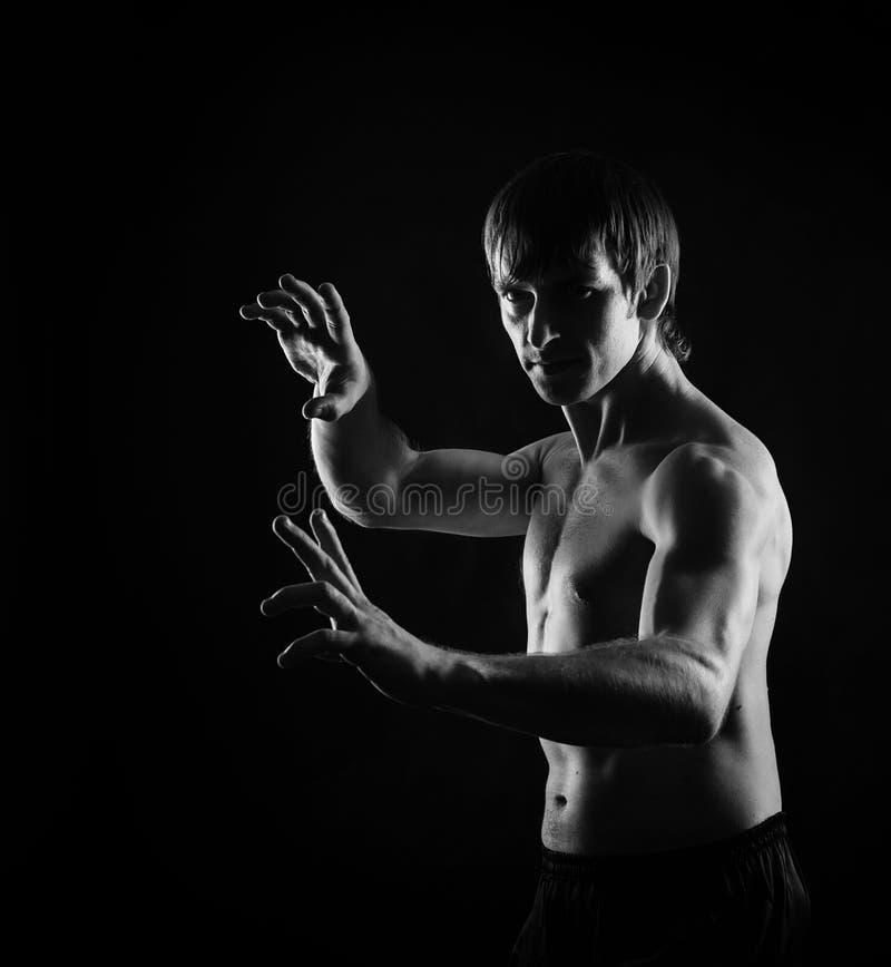 Posição do kata de Kung Fu Dragon fotografia de stock