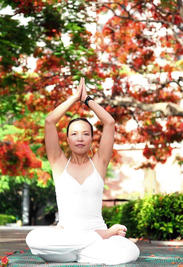 Posição dos lótus da ioga imagem de stock royalty free