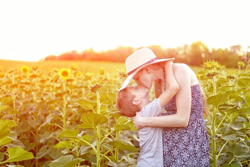Posição grávida de beijo da mãe do filho pequeno feliz no campo ensolarado de girassóis de florescência Close-up fotografia de stock royalty free