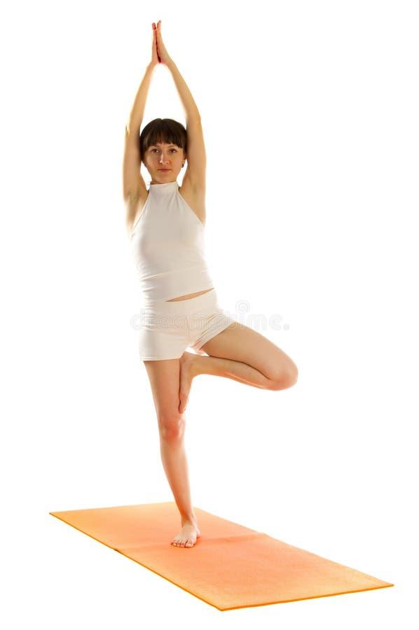 Posición de la yoga de Vrikshasana imagen de archivo