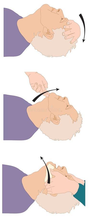 Posición principal para la vía aérea abierta ilustración del vector