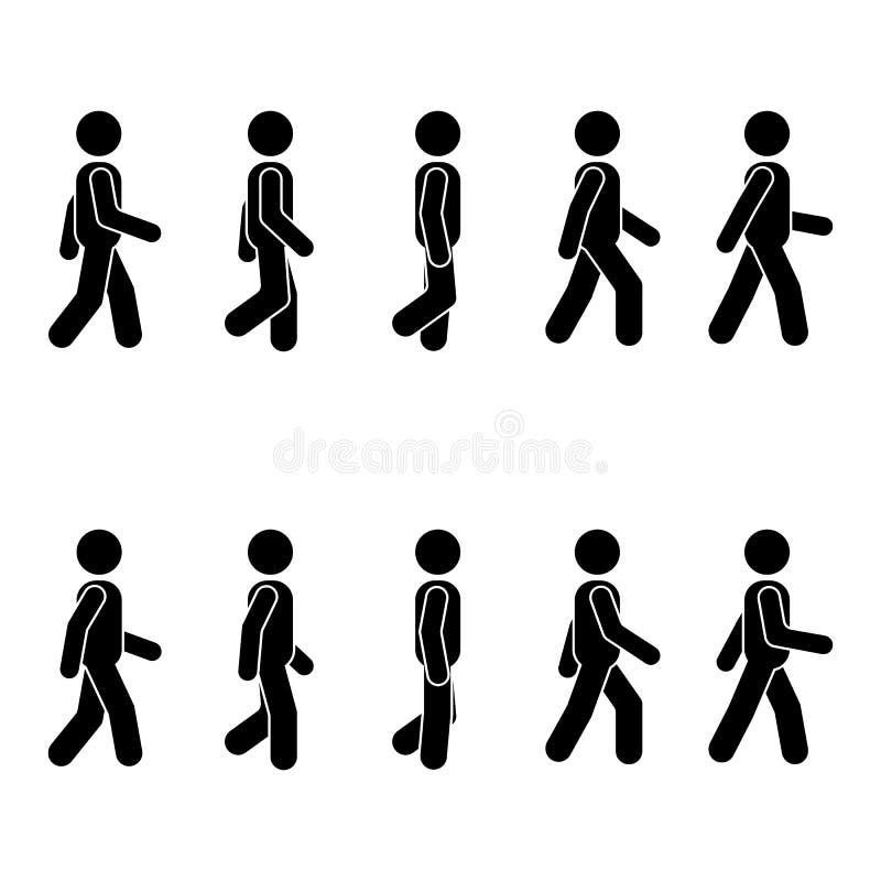 Posición que camina de la gente del hombre diversa Figura del palillo de la postura Vector el pictograma derecho de la muestra de ilustración del vector