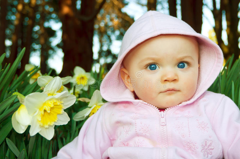 Posing with Daffodil. Infant girl sitting among pretty daffodils. Time period is very late winter almost spring. Infant is eight to nine months old royalty free stock photos