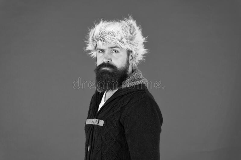 Posing for photo. bearded man ready for winter activity. get warm and comfortable. male fashion. serious trendy hipster royalty free stock photography