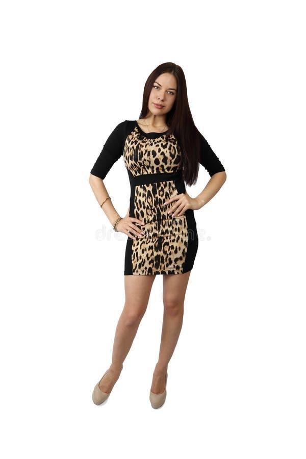 posing pretty woman young στοκ φωτογραφία