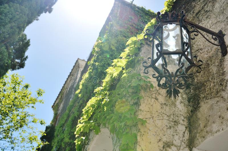 Positano, Amalfi coast, Italy - view of a lamp, plants and building facade. In a sunny day stock image