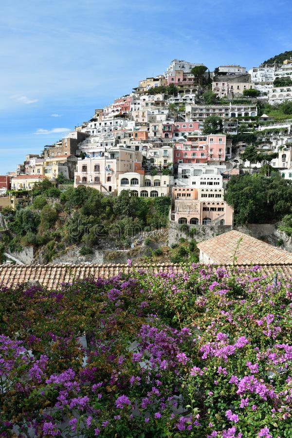 Positano and bouganvillea vert. Bougainvillea spreads across a roof in front of the colourful houses of Positano stacked on a precipitous hillside, Italy stock photo