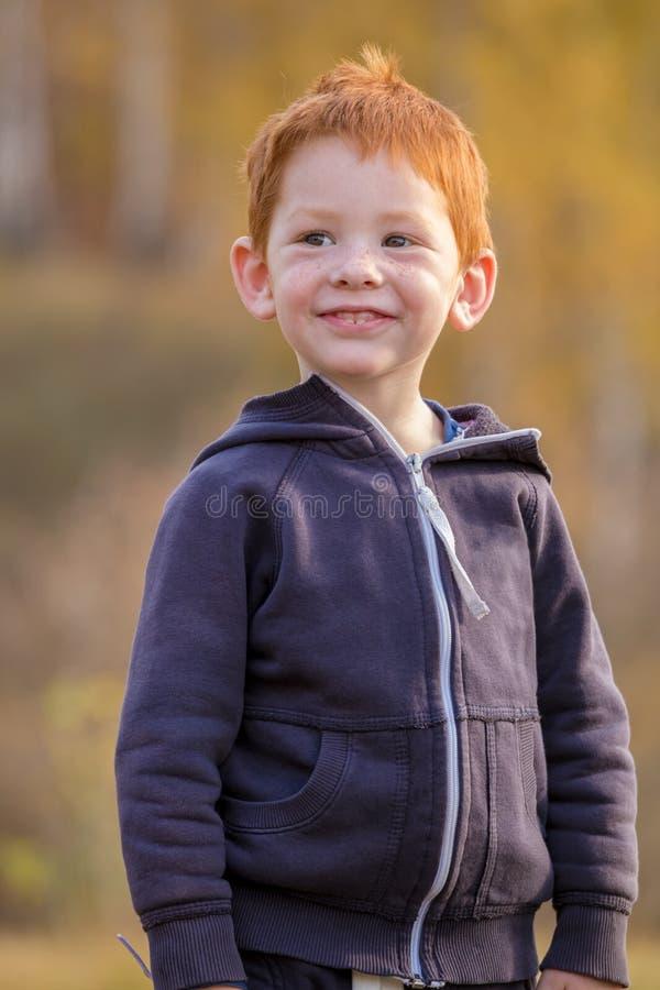 Position adorable de petit garçon sur le paysage d'automne images libres de droits