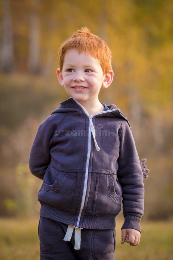 Position adorable de petit garçon sur le paysage d'automne image stock