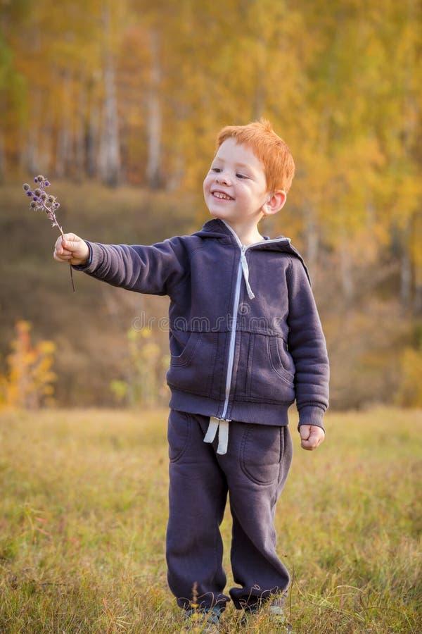 Position adorable de petit garçon sur le paysage d'automne photos stock