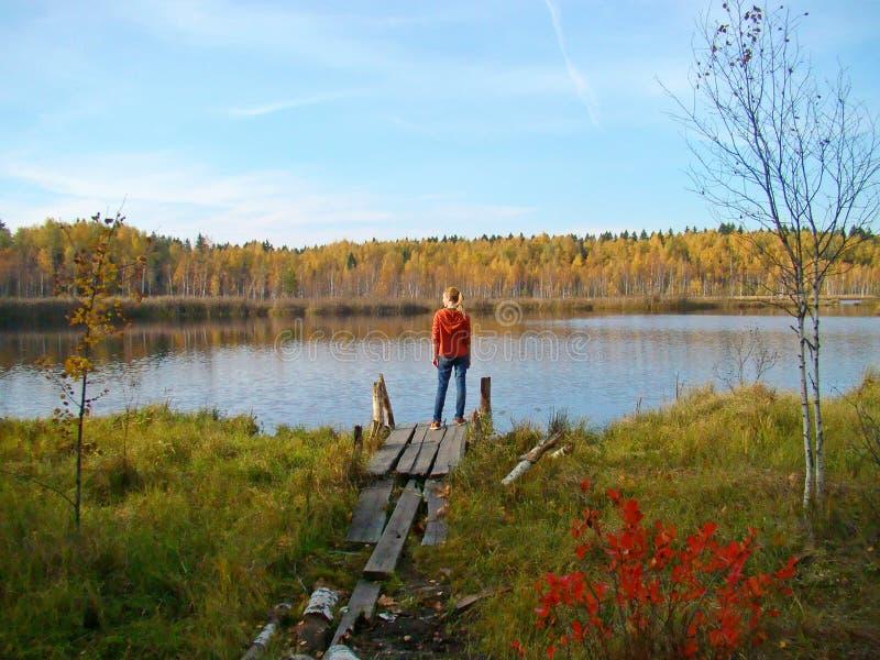 Position blonde de fille sur le pont en bois sur le lac de forêt image stock