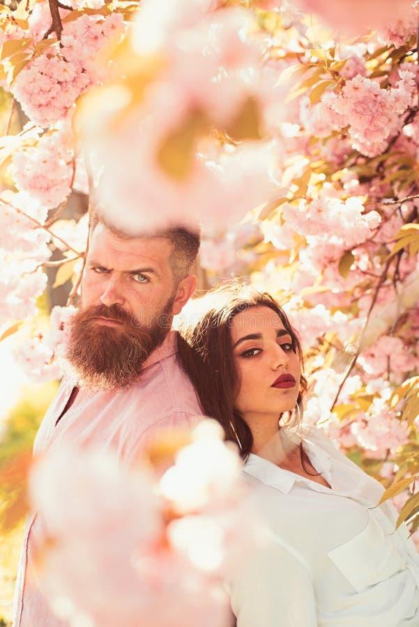 Position d'homme et de femme sous les branches de floraison la journée de printemps Le couple se tient près des arbres de Sakura  photographie stock libre de droits