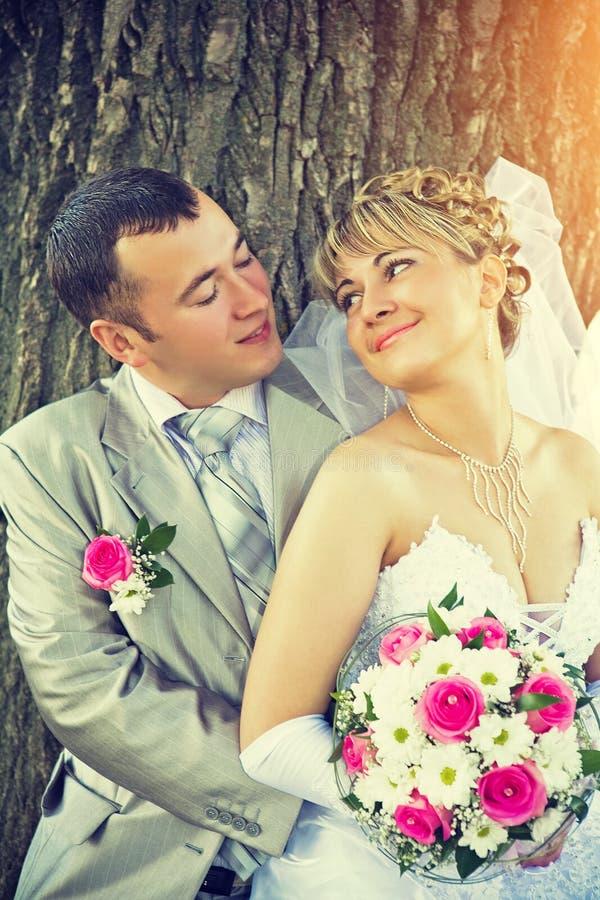 Position de regard et de sourire de beaux jeunes jeunes mariés dessus photographie stock libre de droits