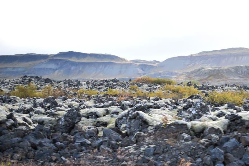 Position islandaise/montagne/lave de nature photo stock