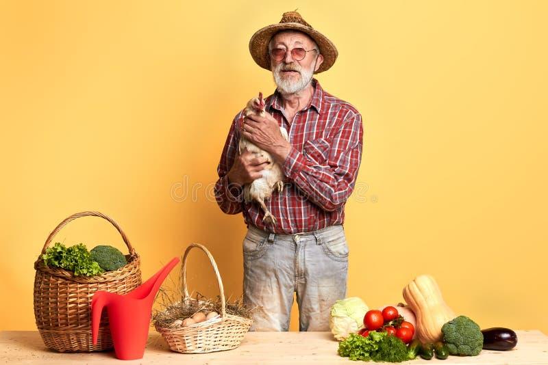 Position mûre de jardinier avec la poule derrière le compteur avec les légumes frais image libre de droits