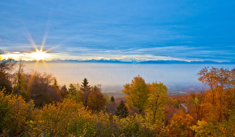 Position suisse d'automne de forêt image libre de droits