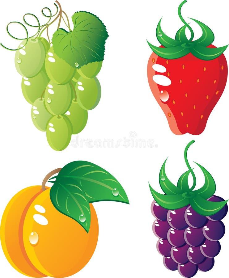 Positionnement de graphisme de Berrys illustration libre de droits