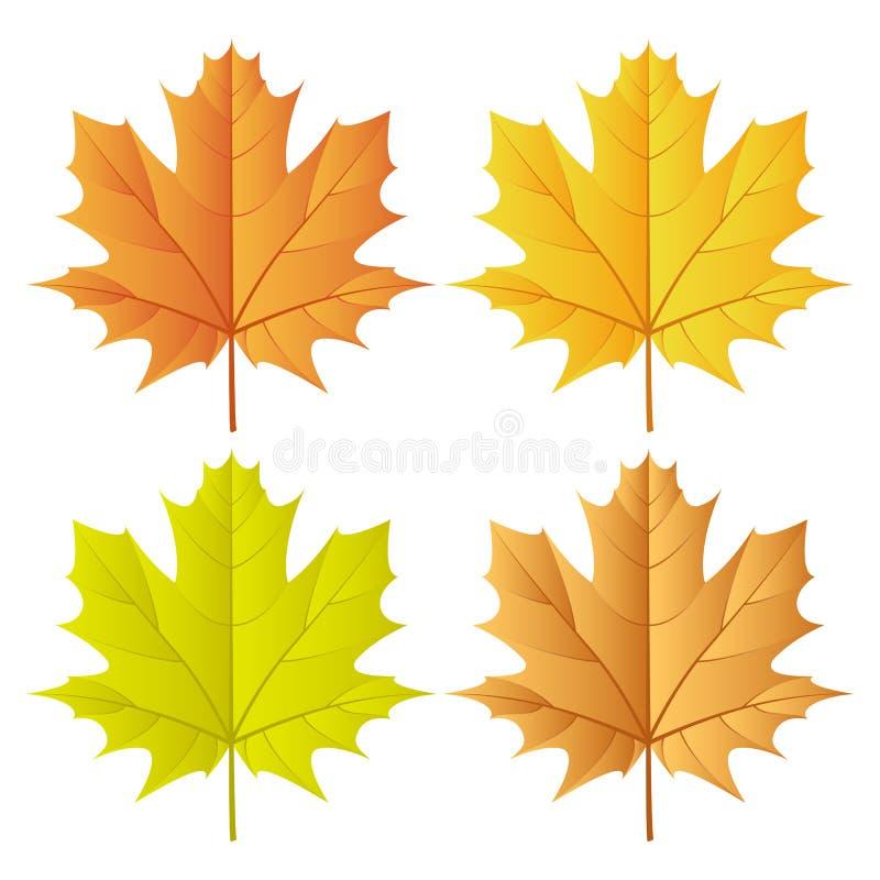 Positionnement de lame d'automne illustration de vecteur