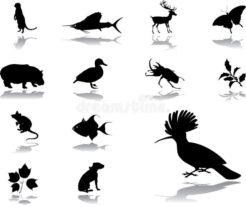 Download Positionnement De Nature De 98 Graphismes Illustration de Vecteur - Illustration du oiseau, lame: 8670151