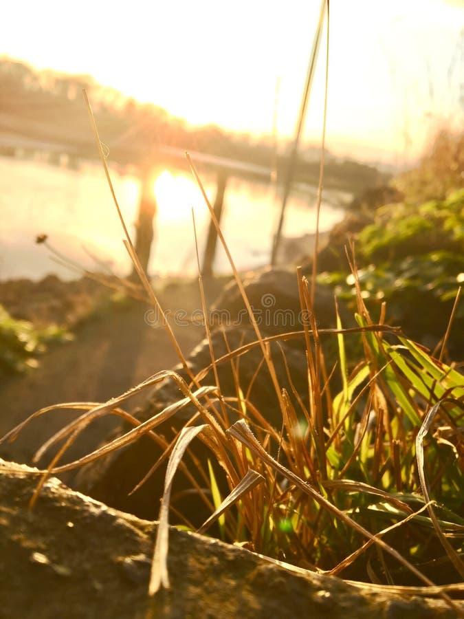 Positionnement de Sun photos stock