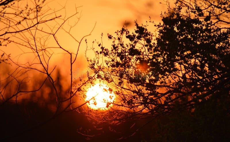 Positionnement de Sun images libres de droits