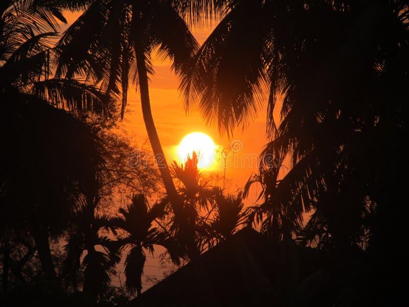 Download Positionnement de Sun photo stock. Image du gentil, temps - 77153010
