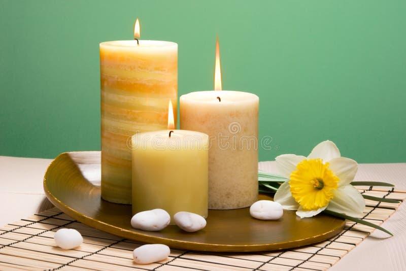Positionnement de thérapie d'arome de Daffodiles photographie stock libre de droits
