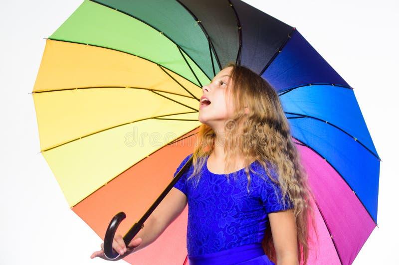 Positiv nedgångsäsong för stag Vägar att förbättra ditt lynne i nedgång Vägar att ljusna ditt nedgånglynne Färgrik tillbehör för royaltyfri bild