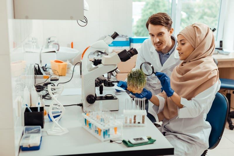 Positiva smarta forskare som tillsammans arbetar i labbet fotografering för bildbyråer