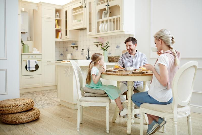 Positive family chatting at breakfast royalty free stock images