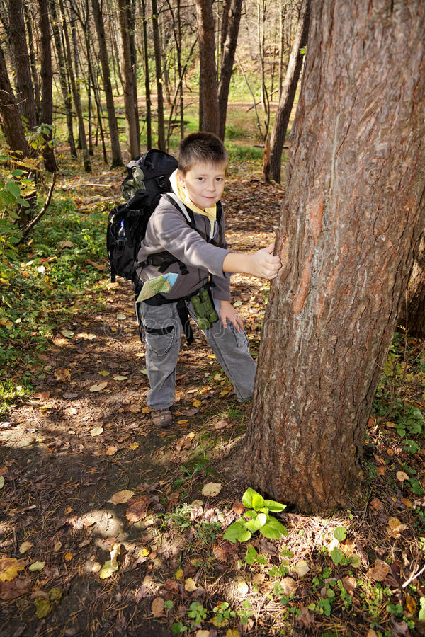 Download Positive boy with backpack stock photo. Image of forest - 26425586