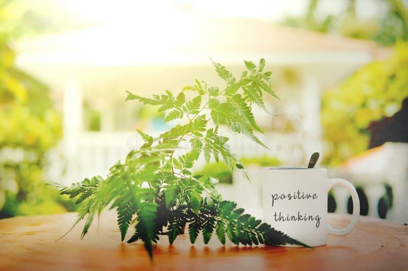 positive denkende Wörter geschrieben am weißen Becher auf den Holztisch gegen Blatt- und Sonnenaufflackern mit undeutlichem bokeh lizenzfreie stockfotografie