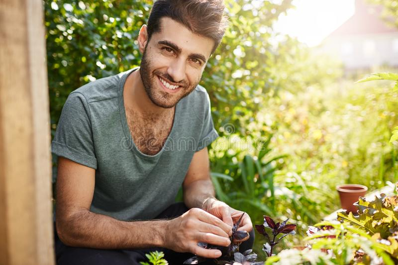 Positive emotions, countryside lifestyle. Outdoor portrait of young bearded hispanic farmer smiling with teeth, working royalty free stock images