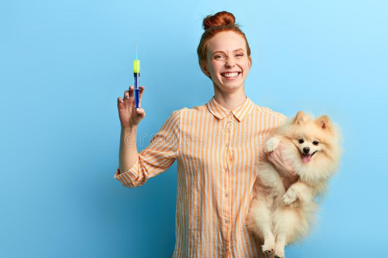 Positive happy overjoyed girl with hair bun holding syringe and adorable pet stock photography