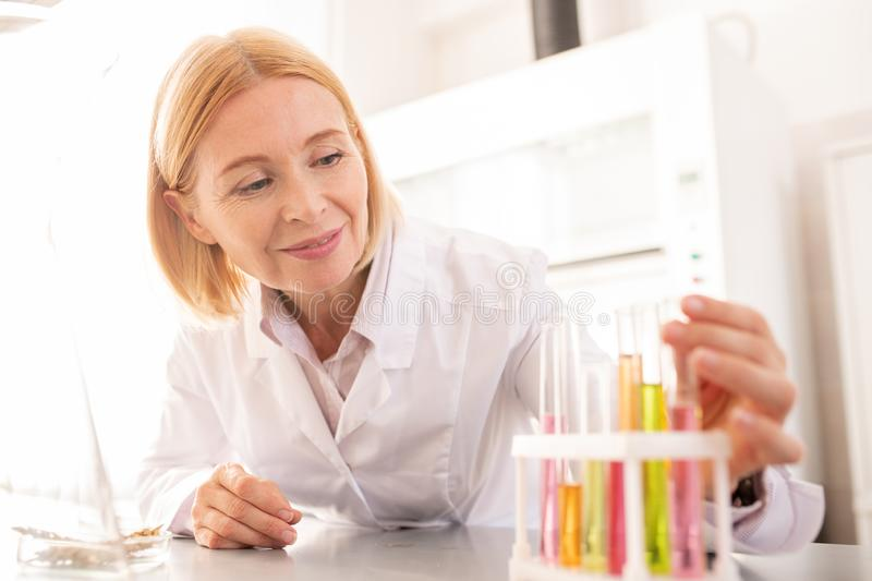 Positive lady checking chemical liquids. Positive confident mature lady with blond hair putting test tubes in rack while checking chemical liquids in laboratory royalty free stock photography