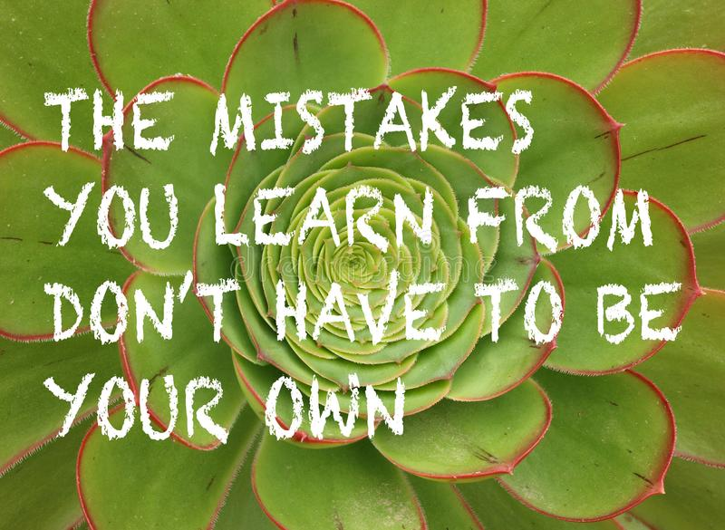 positive learning quote with green and red succulent plant background royalty free stock photography