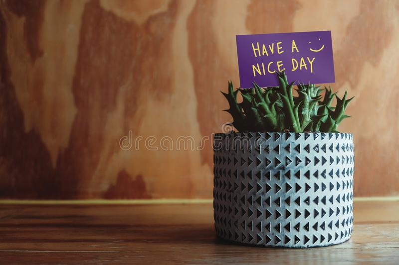 Positive Mind for Daily Life Concept. Have a Nice Day Text on Paper Card in Small Cactus Pot. Decorated on Wooden Table stock photography