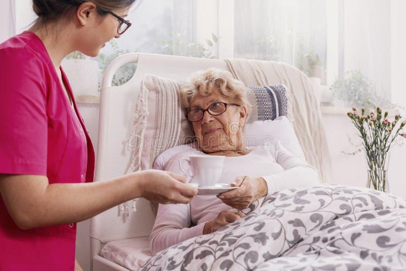 Positiver älterer Patient, der im Krankenhausbett mit hilfreicher Krankenschwester in der rosa Uniform an ihrem Standort liegt stockbild