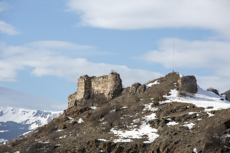 Posof catle στην περιοχή Posof Ardahan, Τουρκία στοκ φωτογραφία με δικαίωμα ελεύθερης χρήσης