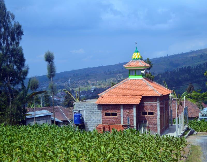 Posong, destino do ` de Instagenic do ` da terra de Temanggung Indonésia fotografia de stock royalty free