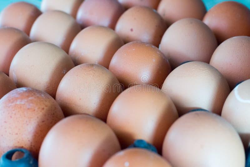 Pospolici Świezi jajka mogą znajdować przy Lokalnym Koh samui rynkiem zdjęcie royalty free