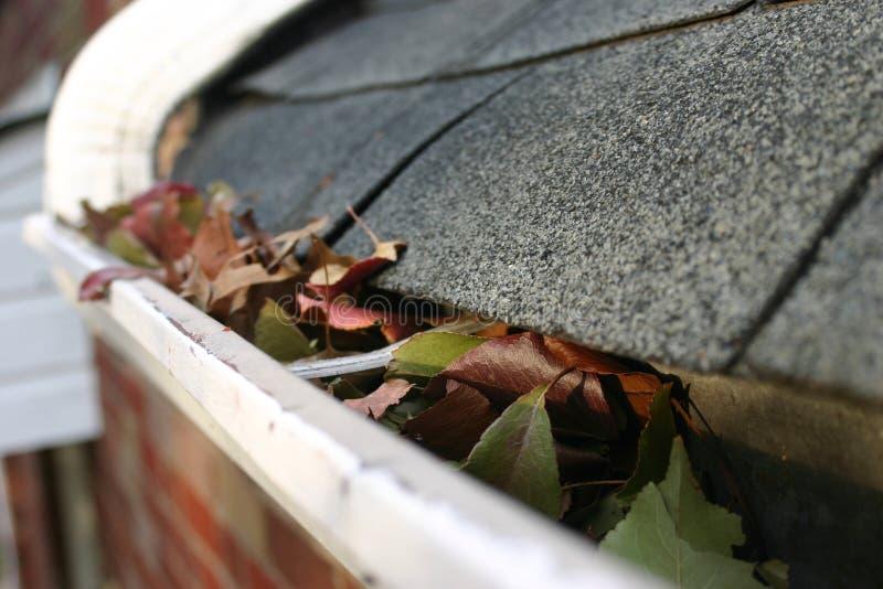 posprzątaj 5 upadku rynny liści obrazy stock