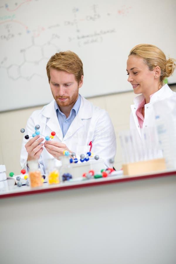 Posse do professor e estudo do modelo molecular com seu coll fêmea imagens de stock royalty free