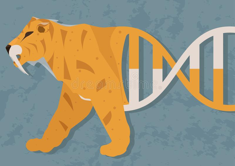Possibility of resurrection biology or cloning. Will it be possible to create an organism, which was an extinct species. Sabre-toothed tiger from DNA royalty free illustration