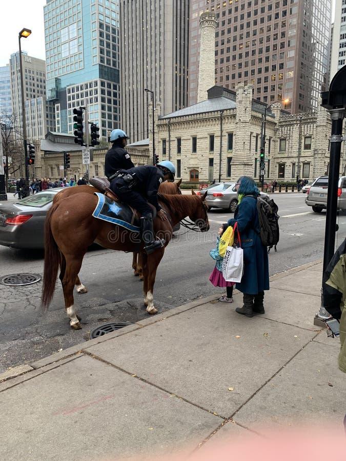 Posso toccare il naso del cavallo? fotografia stock