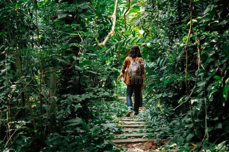 Postérieur des voyageurs masculins marchant par la jungle un homme trimardant dans la forêt dense concept des vacances et des vac photo stock